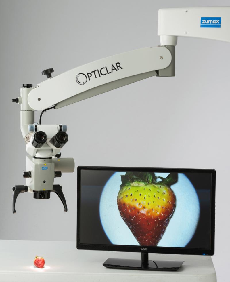 Dental Microscope Strawberry Examination
